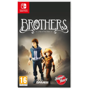 brothers a tale of two sons switch visuel produit